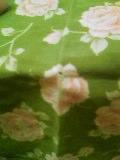 p051204_1445.jpg