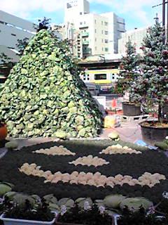 キャベツのピラミッド