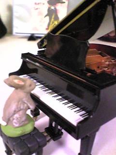 ピアニストうさ