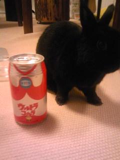 東京にもウルトラマンのジュースが!