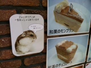ハムくんもケーキ