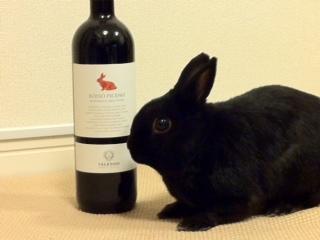 赤いうさぎのワイン