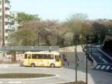 ジブリ行きのバスと玉川上水