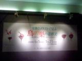 吉祥寺美術館鳥の巣の絵と実物の展覧会